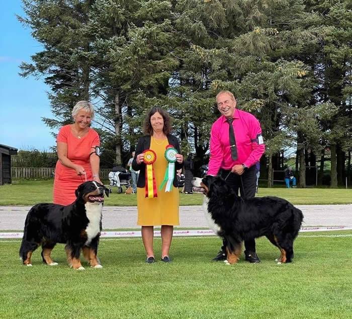 Kan være et bilde av 3 personer, inkludert Gro Solberg, folk som står, hund og utendørs